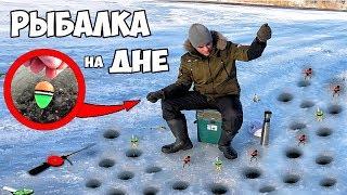 Какая рыба клюет зимой на мормышку