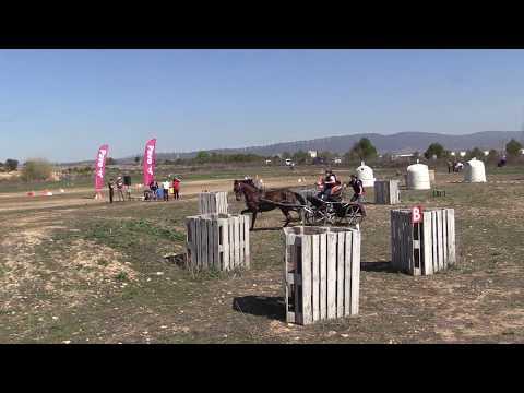 I Fase Cto Navarro Enganches Obstáculos 240319 Video 5