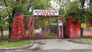 Одиночный пикет защитников стадиона «Красная стрела»