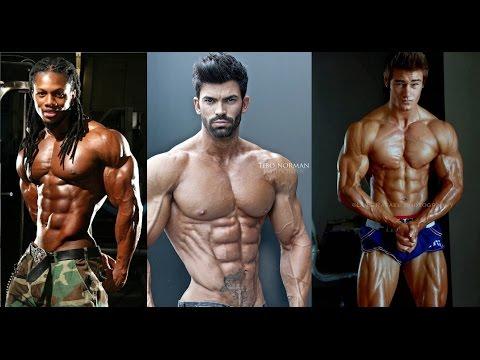 Les muscles naugmentent pas dans le montant