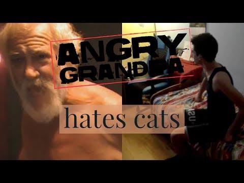 Angry Grandpa-100 ways to love a cat *Parody*