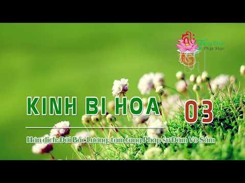 Kinh Bi Hoa -3