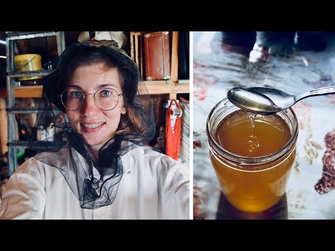 , title : 'BEEKEEPING IN RUSSIA: everything about bees and beehives, how honey is made, work in an apiary. B2C1