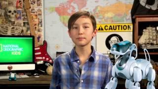 Nat Geo Kids and Robot Animals!