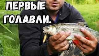 Река нара рыбалка весной