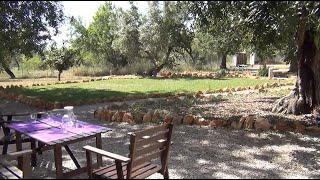 Video del alojamiento Casa da Alfarroba