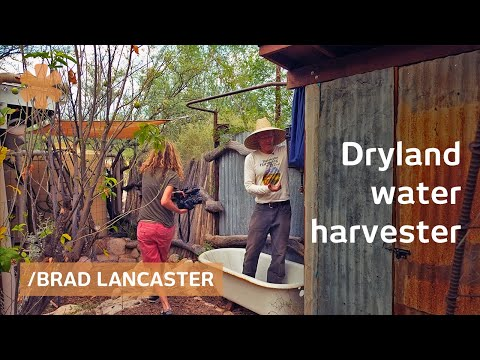How to Harvest and Store Water for Laundry, Cooking, Drinking & Irrigation