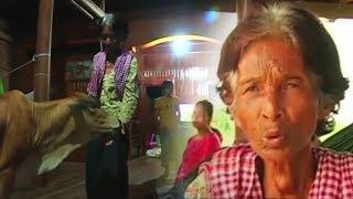 Heboh! Wanita 74 Tahun Nikahi Sapi! yang Dilakukan saat Berdua di Ranjang Bikin Melongo