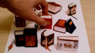 Смотреть онлайн Оптический обман с маленькими книжками