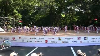 舞華(スーパーよさこい2012・文化館ステージ)