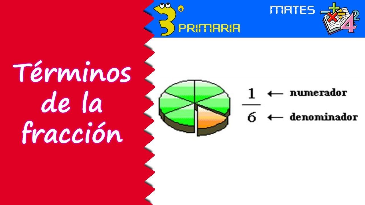 Matemáticas. 3º Primaria. Tema 12. Términos de la fracción