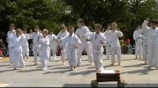 preview picture of video 'Karate Várpalota 2009 MAJÁLIS bemutató gyerekek'