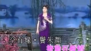 Cầm Khiêu Tân Từ - Yuki Hibino - Việt dịch
