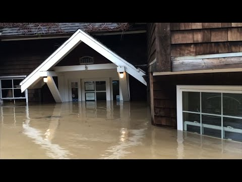 The Russian River in the wine country north of San Francisco is now expected to recede after reaching its highest level in 25 years. The river swamped some 2,000 homes and other buildings, disrupting many peoples' lives. (Feb. 28)