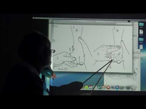 Brust-Zeichnung