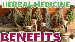 BENEFITS OF HERBAL MEDICINE  Top  Medicinal Herbs More People Are Using