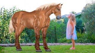 Настя и Весёлые истории про лошадку, ёжиков и другие игрушки