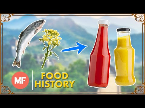 Where do Ketchup and Mustard Come From?