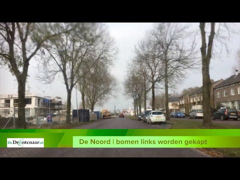 Bomen langs De Noord moeten wijken voor voetpad van 4 meter breed
