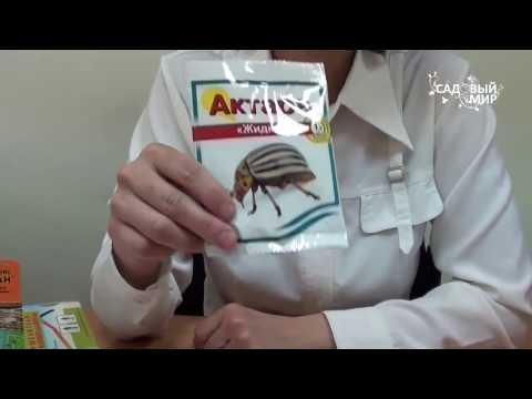 Как защитить растения от вредителей. Часть 2. Препараты против насекомых-вредителей