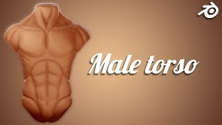 Stylized Male Torso | Daily SpeedSculpts In Blender (TL With Comments)