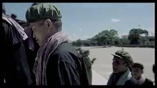 Survive, a film by Roshane Saidnattar - English version