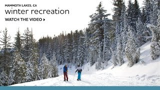 Winter Recreation in Mammoth Lakes