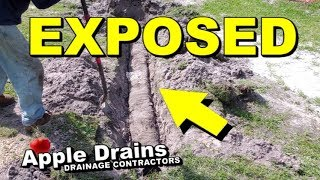 NDS Quick Drain EXPOSED, French Drain, Yard Drain after 5 Years