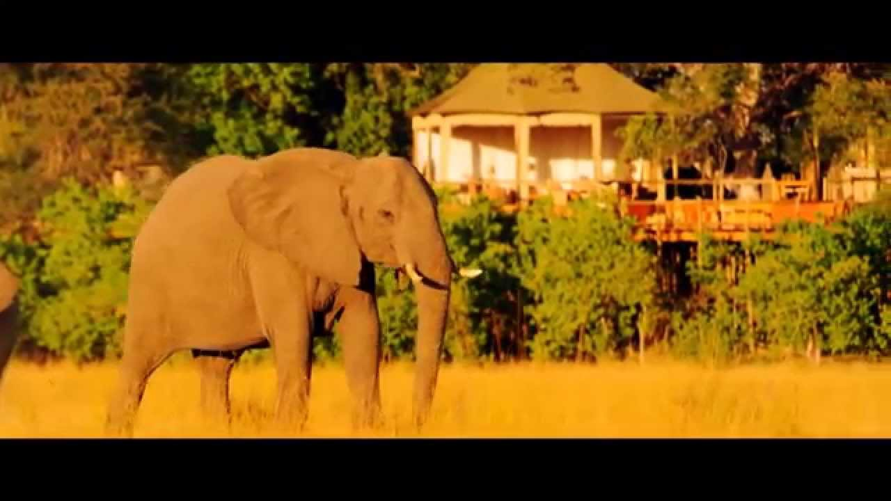 Namibia: Onjala Tierbeobachtung (1:09)