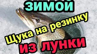 Ловля рыбы на резинку зимой