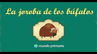 La joroba de los búfalos
