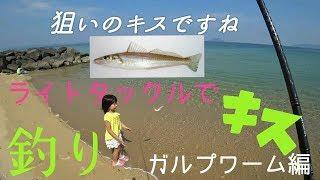 福岡県糸島にてアジングロッドでキス釣り。ガルプは凄かった…