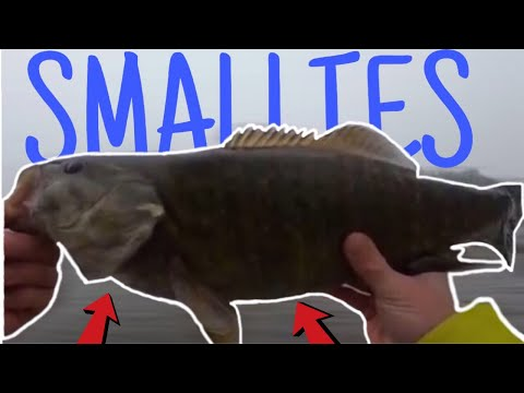 FISHING IN SUB ZERO CONDITIONS FOR GIANT SMALLMOUTH!