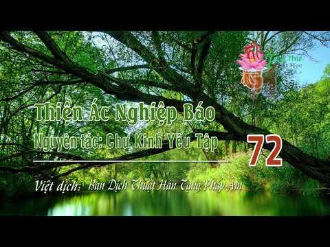 Thiện Ác Nghiệp Báo -72