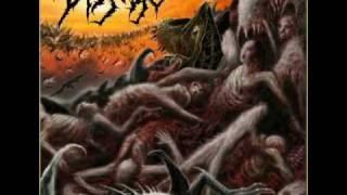 Disgorge - Descending Upon Convulsive Devourment