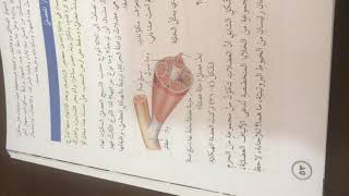 المفاصل والغضاريف والعضلات إعداد د.عماد مليحات