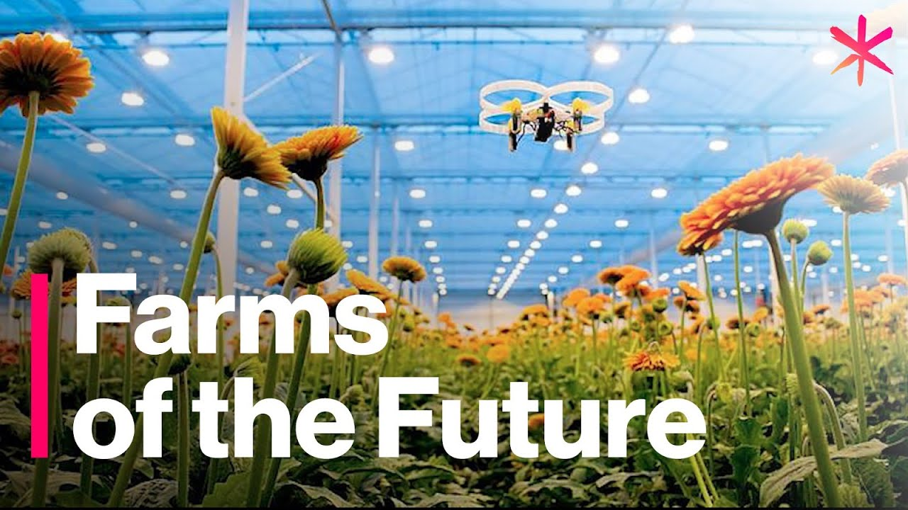Farms from Tomorrow