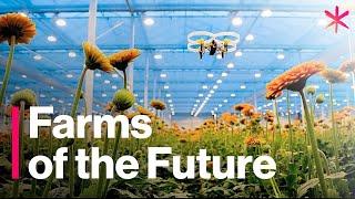 Granjas futuristas que alimentarán el mundo