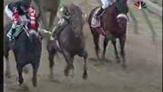 Afleet Alex Preakness Stakes 2005 + overview of near fall!