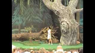 Pocahontas and Her Forest Friends at Disney's Animal Kingdom (2006)