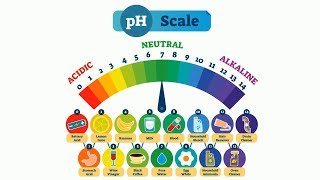 PH Scale in Simple Terms