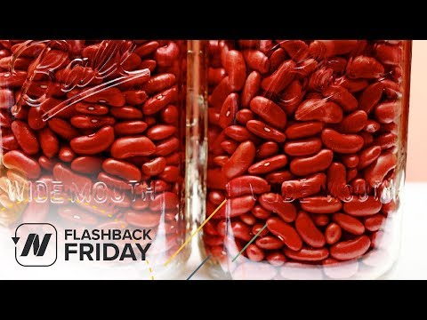 Flashback Friday: Which Type of Protein Is Better for Our Kidneys?