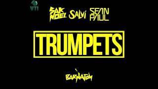 Sak Noel &   Sean Paul   Trumpets Radio Edit