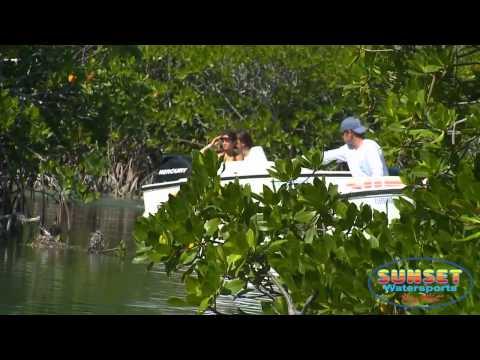 Safari Snorkel Tour