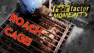 Fear Factor Moments | Roach Cage Escape