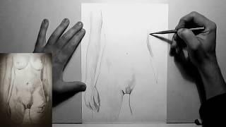 Женское тело female body