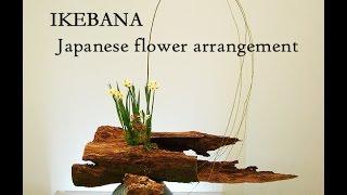 Japanese Flower Arrangement -IKEBANA -  生け花