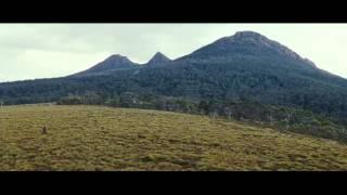 The Hunter (2011) Video