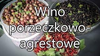 Wino porzeczkowo-agrestowe - prosty przepis :)