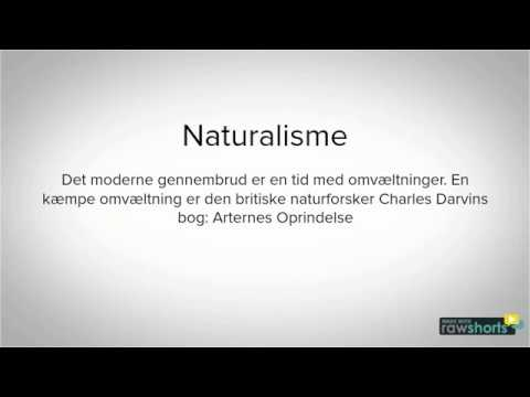 mp4 Naturalisme Og Kritisk Realisme, download Naturalisme Og Kritisk Realisme video klip Naturalisme Og Kritisk Realisme